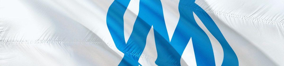 Tout sur l'Olympique de Marseille